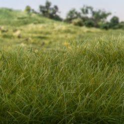 Woodland Scenics statisch gras