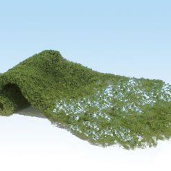 Foliage ( loof )